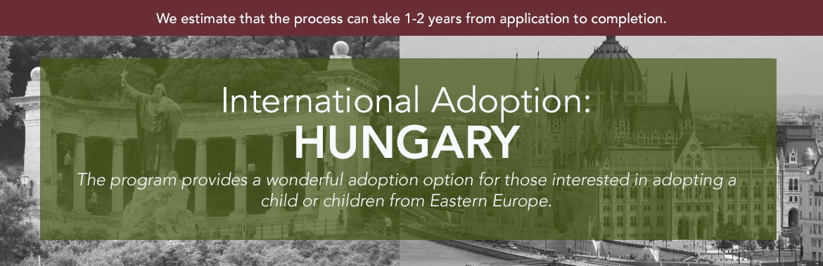 How long does the adoption process take?